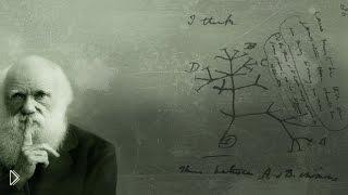 Смотреть онлайн Биография Ч. Дарвина