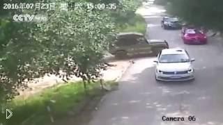 Смотреть онлайн В диком зоопарке на девушку напал тигр