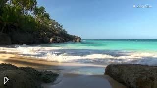 Смотреть онлайн Спокойный ролик для релакса с природой