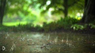 Звуки природы: 12 часов спокойного дождя - Видео онлайн