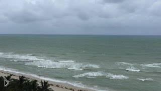 Прямая трансляция урагана в Майами - Видео онлайн