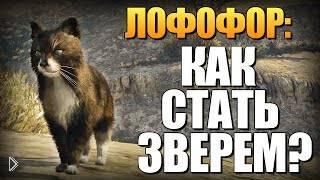 Смотреть онлайн Секрет в GTA 5: Играем за животных