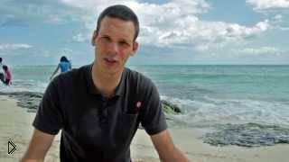 Смотреть онлайн Главное в плавании - длинное тело