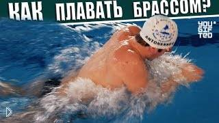 Смотреть онлайн Урок плавания брассом в бассейне