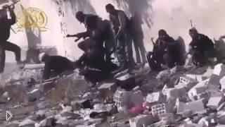 Вот так проходят будни в Сирии - Видео онлайн