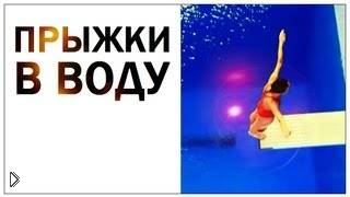 Смотреть онлайн Прыжки в воду, научный взгляд
