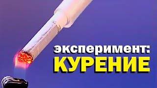 Галилео о вреде курения - Видео онлайн