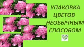 Смотреть онлайн Как подарить цветы необычно