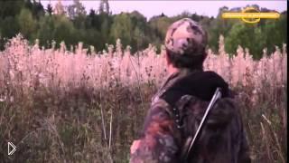 Смотреть онлайн Как охотиться на лося осенью