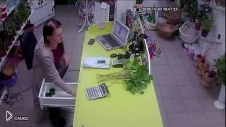 Смотреть онлайн Очень быстрое ограбление цветочного магазина