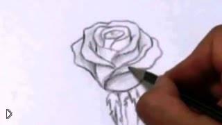 Смотреть онлайн Как нарисовать розу простым карандашом для новичков