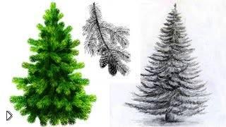 Смотреть онлайн Как просто нарисовать елку карандашом