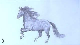 Как нарисовать бегущую лошадь карандашом - Видео онлайн