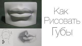 Смотреть онлайн Как нарисовать губы мужские или женские урок