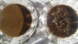 Смотреть онлайн Способ определить кислотность почвы