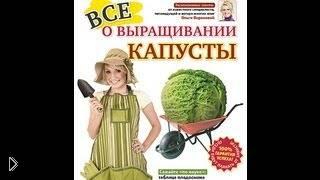 Смотреть онлайн Как выращивать разную капусту на своем участке