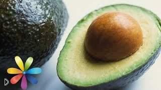 Смотреть онлайн Как вырастить авокадо в домашних условиях