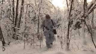 Смотреть онлайн Отстрел волка в степи на снегоходах