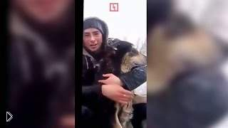 Смотреть онлайн Парни спасают собаку, которая провалилась под лед