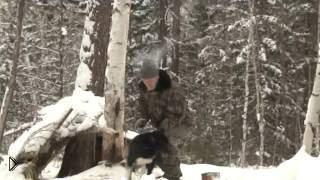 Смотреть онлайн Особенности охоты в тайге Сибири