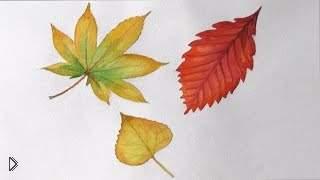 Смотреть онлайн Как рисовать акварелью листья поэтапно