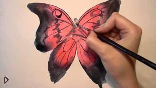 Как нарисовать бабочку акварелью поэтапно - Видео онлайн