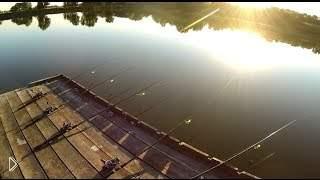 Смотреть онлайн Опытный рыбак на ловле карася