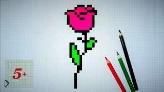 Смотреть онлайн Как нарисовать цветок в тетради в клеточку поэатпно