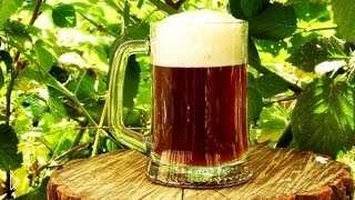 Смотреть онлайн Бизнес идея: Варим пиво в домашних условиях