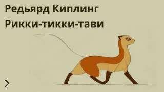Аудиосказка: Рикки-Тикки-Тави - Видео онлайн