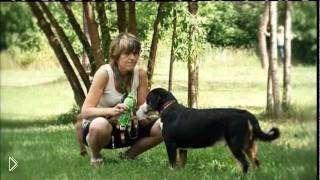 Смотреть онлайн Документальный фильм: Домашние животные