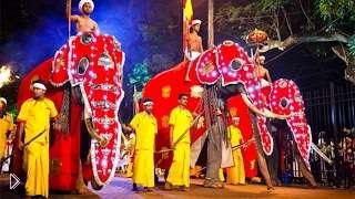 Смотреть онлайн Какие праздники отмечают на Шри-Ланке