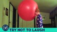 Смотреть онлайн Нарезка роликов с приколами про детей