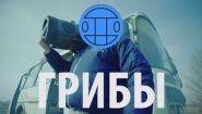 Смотреть онлайн Клип Грибы - Тает Лёд