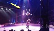 Смотреть онлайн Подборка: В цирке произошли трагедии