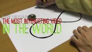 Смотреть онлайн Подборка: Вот за что мы любим науку