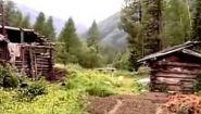 Смотреть онлайн Документальный фильм про тайгу (Сибирь)