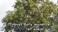 Смотреть онлайн Караоке: Остров невезения (Бриллиантовая рука)