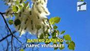 Смотреть онлайн Караоке: Иванушки International - Тополиный Пух