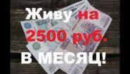 Смотреть онлайн Как прожить на 2500 рублей в месяц