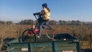 Смотреть онлайн Как собирать семечки с помощью велосипеда