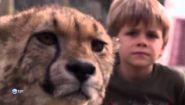 Смотреть онлайн Документальный фильм про зоопарк