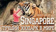 Смотреть онлайн Самый классный зоопарк (Сингапур)