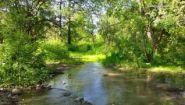 Смотреть онлайн Атмосфера летнего леса, речки